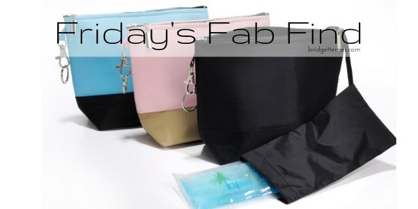 Friday's Fab Find: Icy Bag