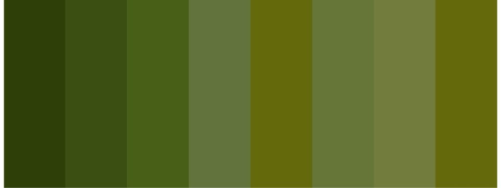 shades of olive